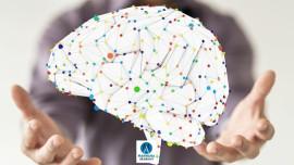 Bilişsel Davranışcı Terapi Eğitimi Online